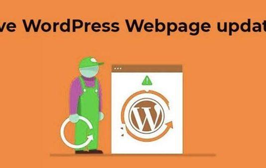 Learn How to Resolve WordPress WebPage Updates Error